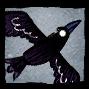 Common Black Crow