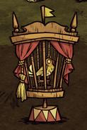 Kanarek w klatce