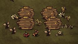 Farma miodu