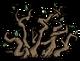 Krzak winorośli (DSS)