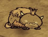 Śpiący mały bawół