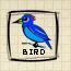 Bird (DG2)