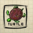 Turtle (DG2)