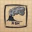 Ash (DG)