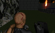 Screenshot Doom 20130820 105613