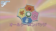 All Seasons Badge 2005 anime