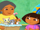 Dora's Moonlight Adventure