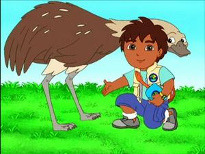 Diego and rhea