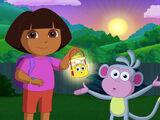 Dora's Night Light Adventure