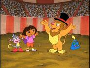 León becoming a true circus lion