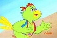 Pirate Parrot-3