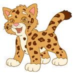 Baby jagaur (4)