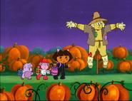 Going Through The Pumpkin Patch