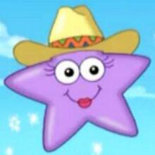 Cowgirl Star