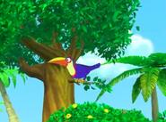 Dora-Senor-Tucan-HD-theme