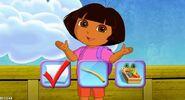 Dora the explorer book explorers(2)