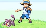 Bug Catcher's ratata