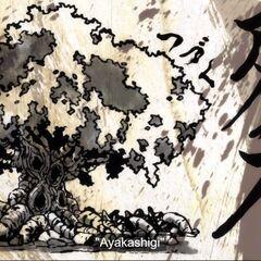 Ayakashigi's name reveal after the ending credits.
