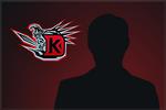Karty graczy drużyny DK (2013)