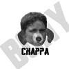 Chappa - logo