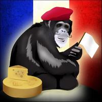 Monkey Freedom Fighters - logo 2