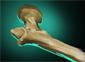 Greevil Blink Bone
