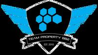 Team Property - logo