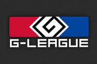 G-League 2014