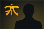 Karty graczy drużyny Fnatic (2013)
