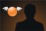 Karty graczy drużyny Orange (2013)