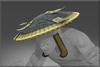 Mysterious Vagabond's Hat