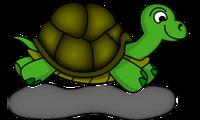 Turtle Masters - logo