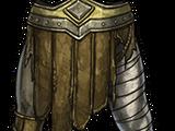 Forgotten Knight's Journey