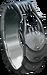 Apex Predator's Ring