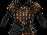 Runic Robes