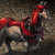 Mount crimson campaigner