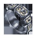 Eternal crusader ring
