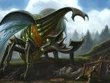 Terracles Beetle (Raid)