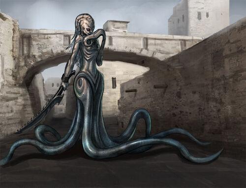 Town squid