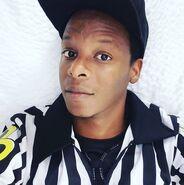 Stad-referee