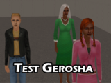 Test Gerosha