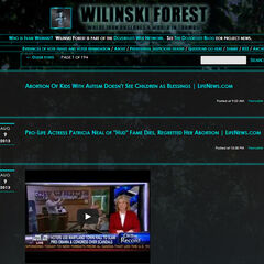 Screenshot of Wilinski Forest re-design on August 11th of 2013.