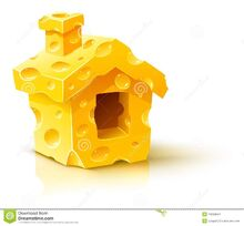 Small-house-made-yellow-porous-cheese-11800644