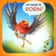 Delicious 15 Robin