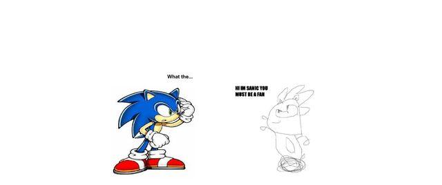 File:Sonic meets sanic.jpg