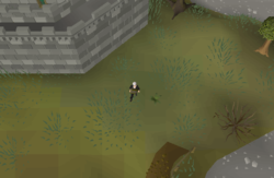 Map clue solution South-eastern Varrock Mine