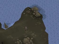 Premium island