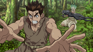 Taiju protects Senku from the lions