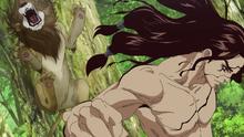 Tsukasa kills the lion