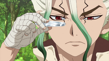 Senku makes Suika glasses